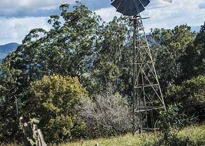 Stuart Bailey Media_Bush Windmill